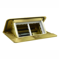 54016X45 Pop-Up Floor Box with Cover, 2-Gang, Brass Finish, Two Openings 45x45mm Size